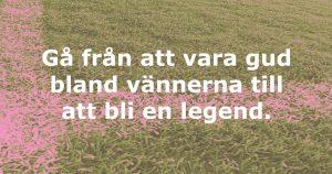 Zlatan_EM_Fotbollsem_Fotboll_Zlatan_Altan_Trädgård