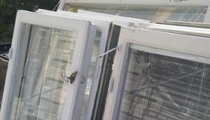 Byta fönster, 10 tips och kostnad