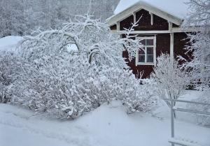 Förbered huset inför vintern.