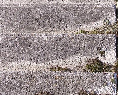 Laga och renovera betongtrappa utomhus