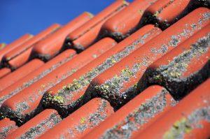 Håll koll på taket