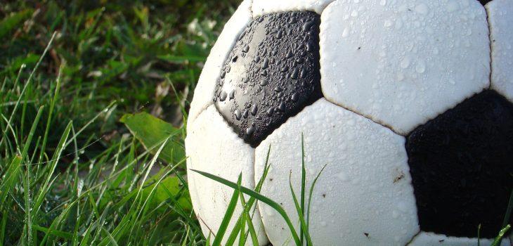 Fotboll i gräset
