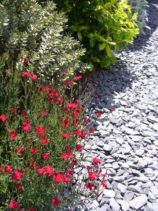 Billiga tips för trädgården - grusgång