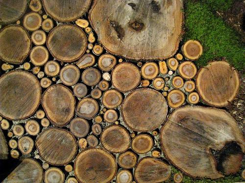 Stora och små träskivor bildar trägången.