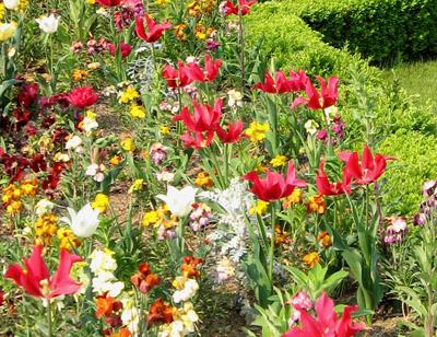 Upphöjd bädd med nivåskillnad i trädgården